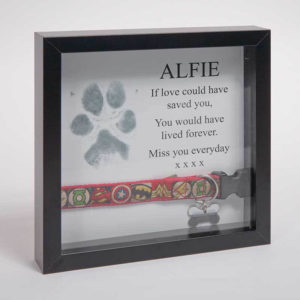 forever-paws-frame-2-300x300 All Products