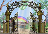 rainbow-bridge Pet Bereavement Leaflet, Poetry and Books