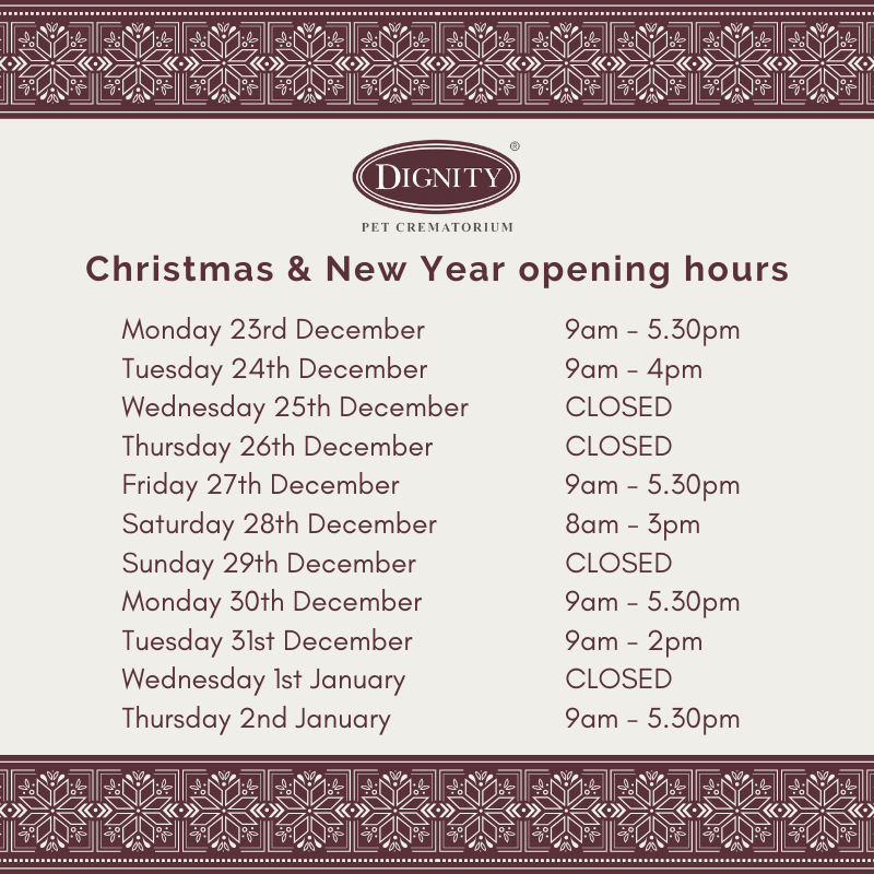 Dignity-Christmas-New-Year-opening-hours. Christmas & New Year Opening Hours