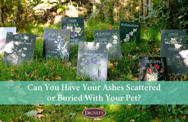 Can I have my ashes buried or scattered with my pet?