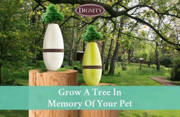 Pet Memorial Tree